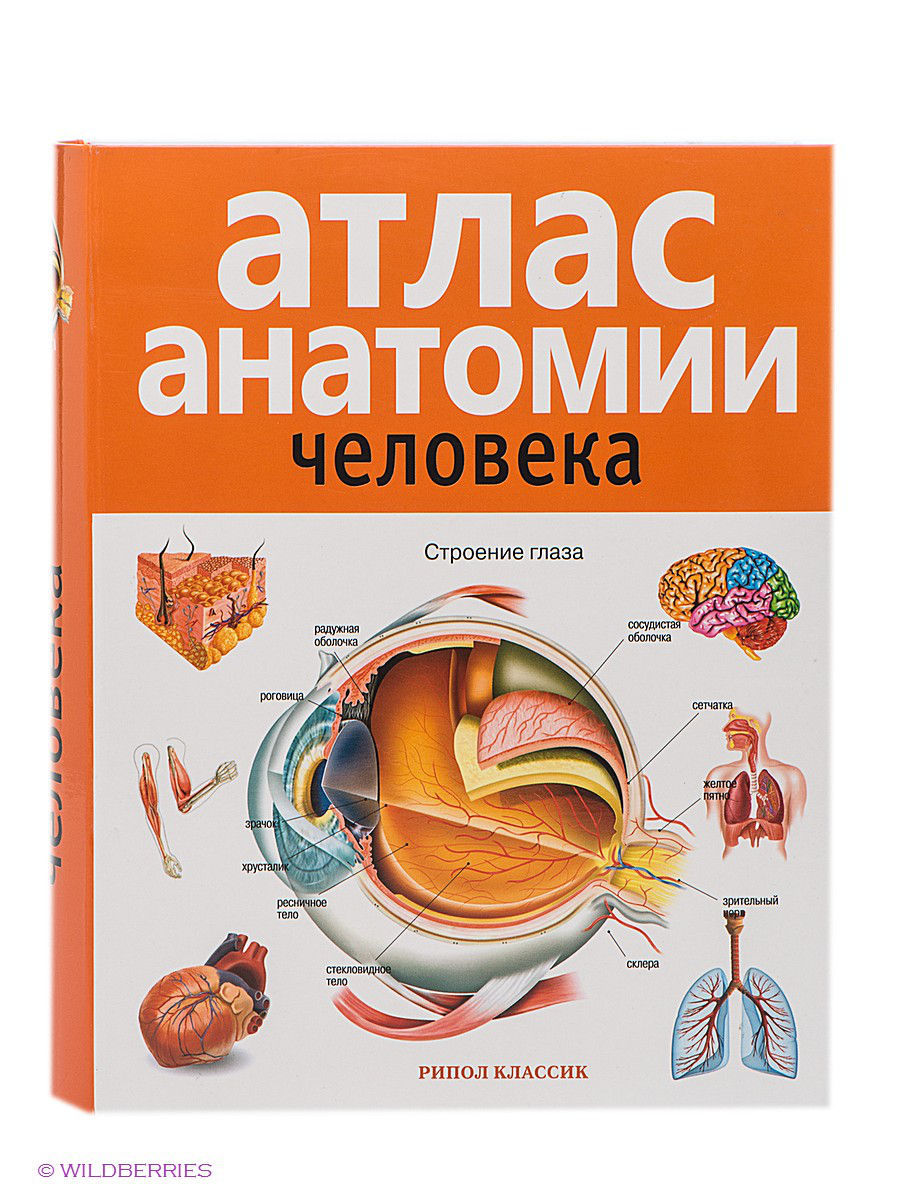 book how to read