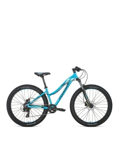 "Two-wheeled bicycle, hydraulic disc, mountain (MTB), 2020, 26 "" FORMAT."