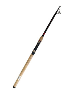 Fishing rod DAIWA