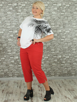 Cropped trousers NadiN
