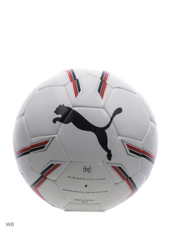 Мяч Pro Training 2 HYBRID ball PUMA