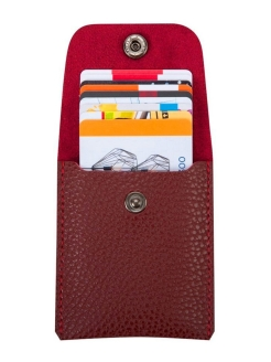 Card Case, Cardholder, Credit Card Gift. Made in Russia. Lampone