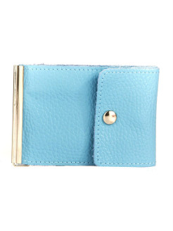 Money clip (blue) Arora