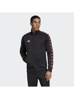 Толстовка TAN CLUB H JKT Adidas
