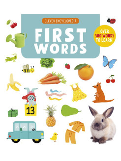 First Words. Clever Encyclopedia Издательство CLEVER