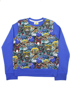 Sweatshirt (sweater) for children for a boy and a girl with a bird VAGR-RG